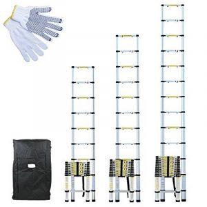 Linxor France Échelle Télescopique Pro en Aluminium anodisé avec Housse de Transport et gants de maintien - Norme EN131 (3,80m) de la marque Linxor image 0 produit
