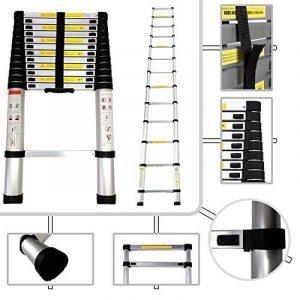 Todeco - Echelle Telescopique, Échelle Pliable - Charge maximale: 150 kg - Standards/Certifications: EN131 - 3,8 mètre(s), EN 131 de la marque Todeco image 0 produit