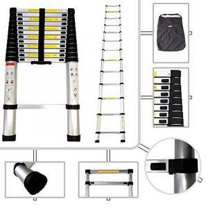 Todeco - Echelle Telescopique, Échelle Pliable - Charge maximale: 150 kg - Standards/Certifications: EN131 - 3,8 mètre(s), EN 131, Sac de transport OFFERT de la marque Todeco image 0 produit